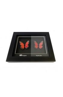 ART GLASS UV 1200 x 800mm