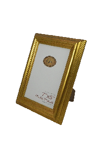 Gold Plastic Photo Frame - GW68-01-Gold-PH